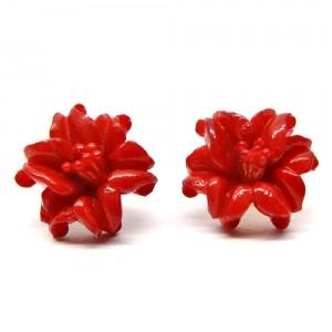 深紅の花1